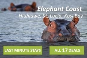 Elephant Coast